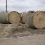 farm ranch supplies-http://www.pasturaslosalazanestx.com