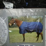 horse blanket winter