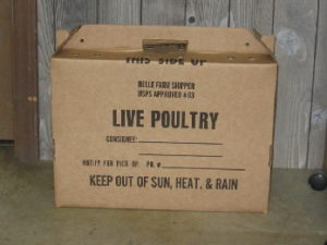 poultry shipping boxes